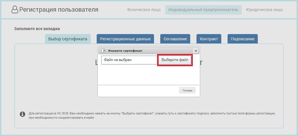 Все шаги после регистрации ип выписка о регистрации ип в налоговой