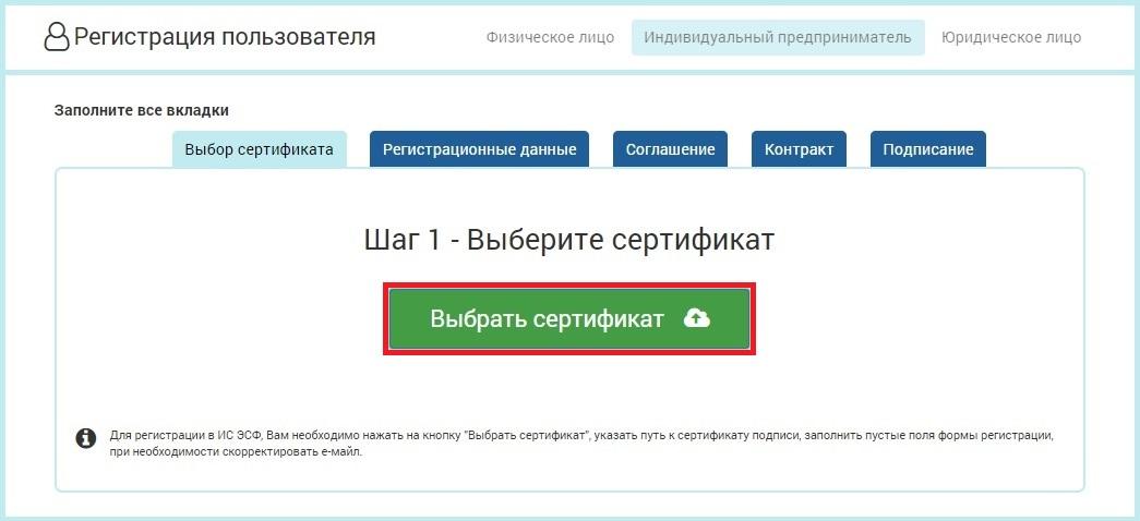 Регистрация ип и следующие действия ип будут сдавать отчетность в электронном виде